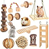 Joody 10 PièCes Ensemble Hamster Chew Jouets Naturel en Bois...