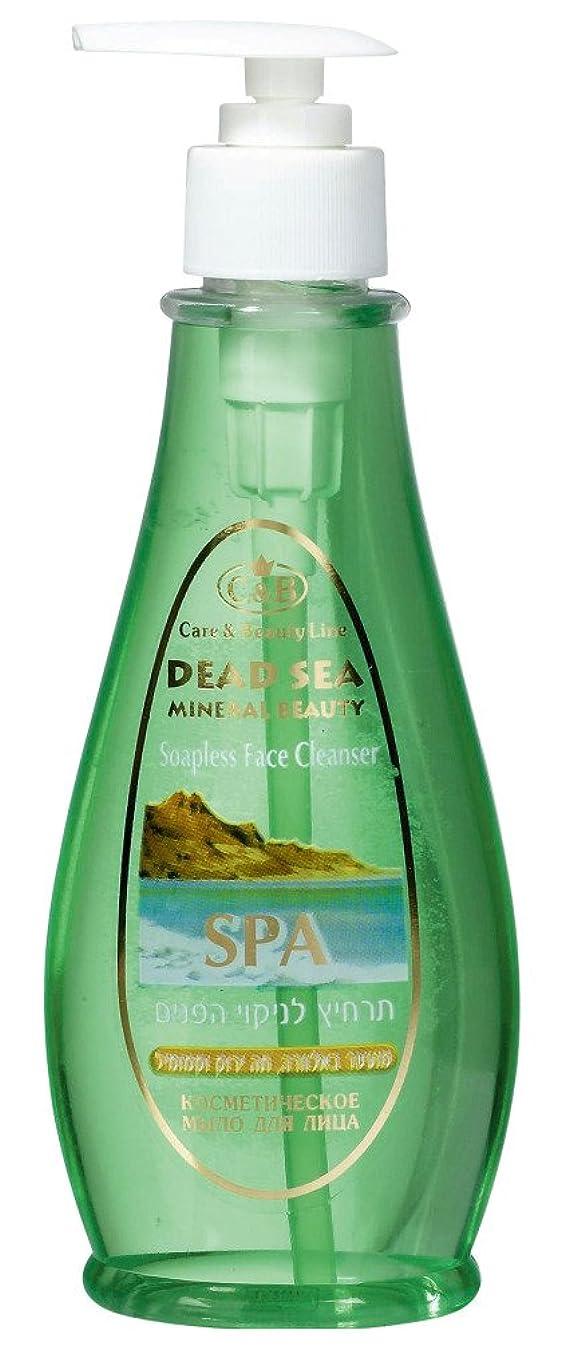 用語集ランドリー後方に石鹸なしの洗顔剤 250mL 死海ミネラル ( Soapless Face Cleanser