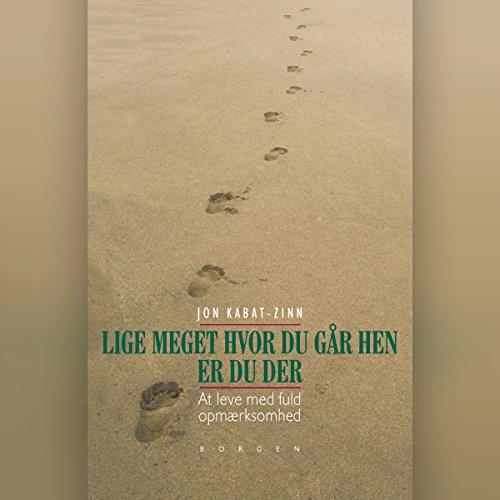 Lige meget hvor du går hen, er du der audiobook cover art