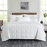 Pinzon Summer Down Comforter/ Down Blanket, Lightweight Duvet Insert-Ultra Soft-400 Thread Count- White- Queen