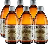 6 x 0,5 Liter Wermuttrank - Maikur-Trank nach Hildegard von Bingen Kurpackung