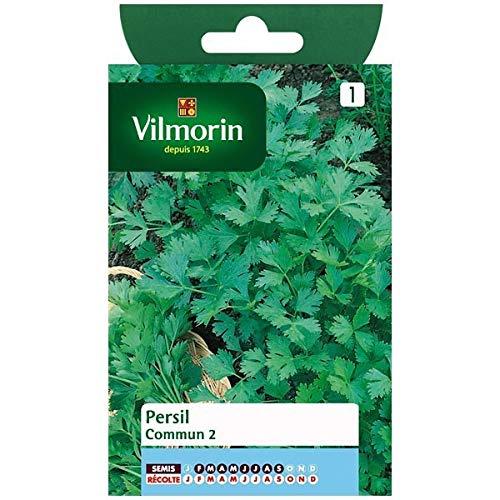 Vilmorin - Sachet graines Persil commun 2