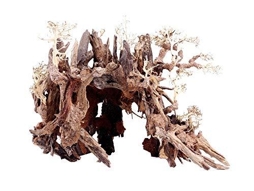 Aquarium Wurzel Bonsai Exclusiv Größe XL 70x50cm Nr.51 Holz Deko Aquascaping