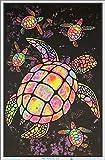 Painted Sea Turtles Blacklight Poster - Flocked - 23' x 35'