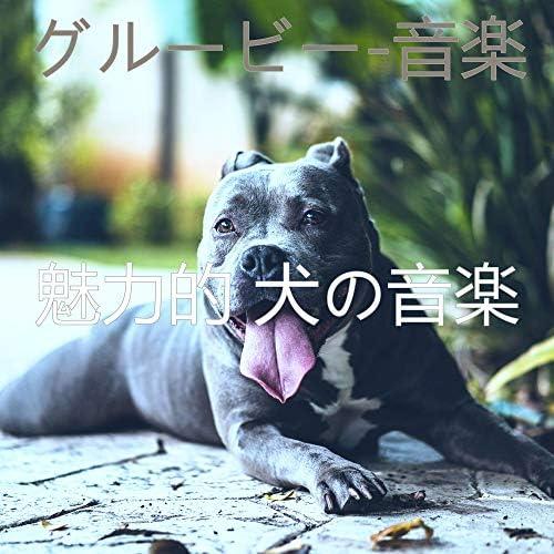 魅力的 犬の音楽