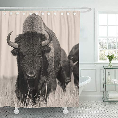 """Emvency Decorative Shower Curtain Head Bison Buffalo in Sepia The Herd of Shot One Animal 72""""x72"""" Waterproof Bathroom Shower Curtain Set with Hooks"""