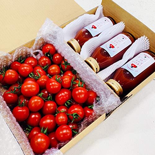 おもいろトマトお試しセット おもいろトマト(約600〜700g)とおもいろトマトジュース180ml×3 お歳暮 お中元 ギフト 贈り物 贈答品 誕生日プレゼント 内祝い 食品 業務用