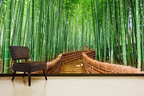 Fotomural Vinilo Pared Bosque Bambú | Fotomural para Paredes | Mural | Vinilo Decorativo | Varias Medidas 150 x 100 cm | Decoración comedores, Salones, Habitaciones.