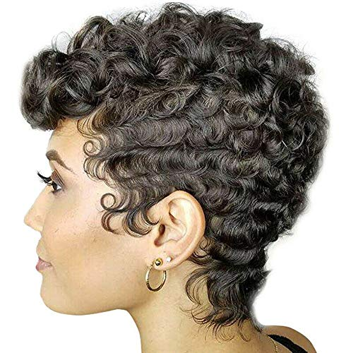 Black Brown Curly Wigs Afro Hair Soft & Healthy Synthetic Wigs for Women No Tangle Fashion Style (Black)