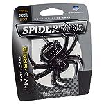SpiderWire Ultracast Invisi-Braid Superline Fishing Line