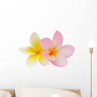 Wallmonkeys Two Frangipani Flowers Wall Decal Peel and Stick Graphic WM53856 (18 in W x 12 in H)