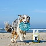 Geruchsneutralisierer für Hunde – natürlicher Entferner von Urin-Geruch - 4