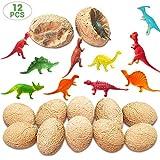 Pywee 12pcs Dino Eggs Dinosaur Fossil Excavation Set Kit de excavación para Bday Favors Archaeology Gift