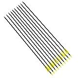 Targarian 10 Fibra di Vetro Frecce Campo Punte Tiro con L'Arco, Compatibile Compound e ricurvo, 78,5cm by