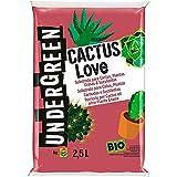 Undergreen CACTUS Love, Terriccio per Cactus e altre Piante Grasse da appartamento o Balcone, Consentito in Agricoltura Biologica, 2,5 l