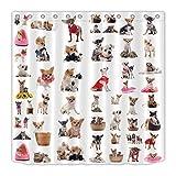 AdaCrazy Mascota Perro Tema decoración Cortina para baño Lindo Chihuahua Pug patrón Imprimir Puesto Conjunto Cortina de Ducha Conjunto