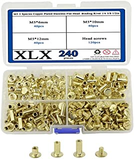 XLX 240PCS(120 Set) M5 3 Species Copper Plated Stainless Flat Head Rivet 1/4 3/8 1/2in Hollow Binding Screws T-Shape Round...