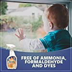 Earth Friendly Products ECOS Window Cleaner with Vinegar, 22-Ounce, Ammonia, Formaldehyde and Dye Free