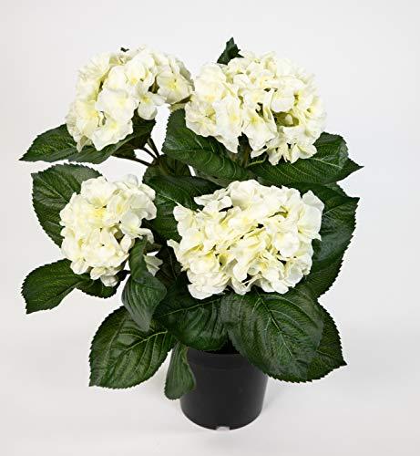 Seidenblumen Roß Hortensienbusch Deluxe 42cm weiß-Creme im Topf LM Kunstpflanzen künstliche Hortensie Pflanzen Blumen