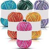 6 pezzi di filato multicolore (60gr/cad)