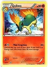 Pokemon - Quilava (19/162) - XY Breakthrough