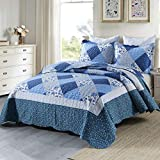 HoneiLife Quilt Set Queen Size - 3 Piece Microfiber Quilts Reversible Bedspreads Patchwork Coverlets Floral Bedding Set All Season Quilts with Blue and White Porcelain Pattern,Queen Size