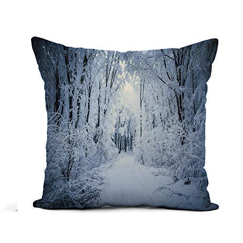 N\A Fodera per Cuscino di tiro Blue Winter Road Through Frozen Forest Snow Colorful Storm Federa Decorazioni per la casa Fodera per Cuscino in Lino e Cotone Quadrato