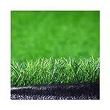 ALGWXQ Gazon Artificiel Résistant À l'usure Protection Environnementale Entretien Facile Arrière-Cour Terrain Football École Fausse Herbe, Vert, 5 Épaisseurs (Color : Green, Size : 2x5m 4cm)