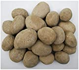 hm Hmleaf 24 PCS Ceramic Pebbles for Fire Pits or Fireplaces or Stoves in Khaki