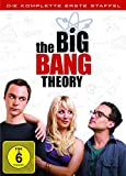 1. Staffel Big Bang Theory