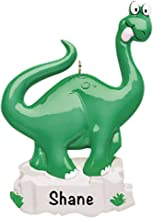 Dinosaur Personalized Ornament - (Unique Christmas Tree Ornament - Classic Decor for A Holiday Party - Custom Decorations for Family Kids Baby Military Sports Or Pets)