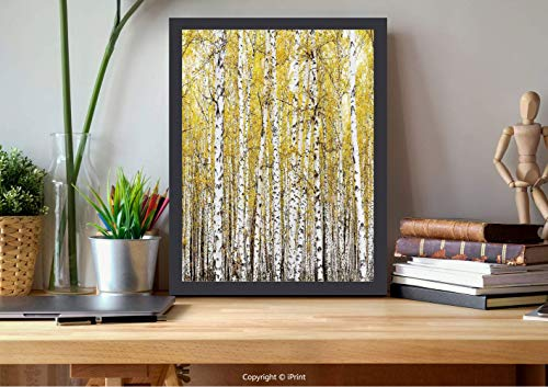 №18205 Wooden Framed Wall Art,Farm House Decor,Autumn Birch Forest Golden Leaves Woodland October Seasonal Nature Picture,Yellow Grey, Best for Gifts