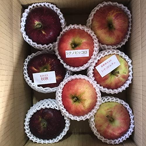 りんご詰合せ 2kg 5〜8玉入り ふじ しなのゴールド シナノスイート 秋映