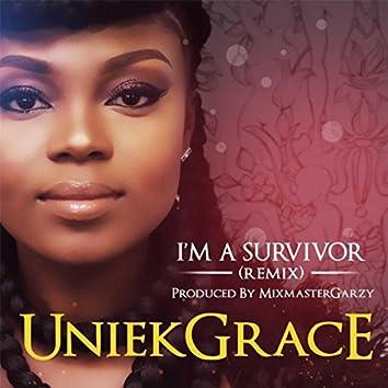 I'm a Survivor (Remix)