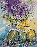 HLDJ Neue DIY Ölgemälde Malen nach Zahlen Erwachsenen Kit40x50cmZoll für Neue Kinder, kreative Digitale Leinen Leinwand-Fahrrad_DIY-Framework