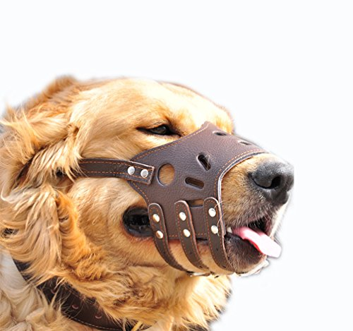 HiujingSport JeonbiuPet Adjustable Dog Muzzle