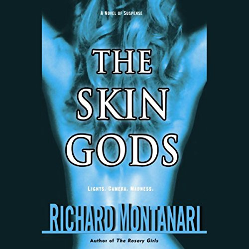 The Skin Gods audiobook cover art