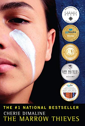 The book cover depicts half the face of a young woman, with a stripe of white makeup on her cheek.  There are also several stickers indicating awards the book was won.