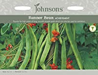 【輸入種子】 Johnsons Seeds Runner Bean ACHIEVEMENT ランナー・ビーン アチーブメント ジョンソンズシード