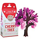 Copernicus Toys Crystal Growing Aspen Tree Official Terraformer kit   Grows in Hours   Facts and Instructions Included (Cherry Tree)