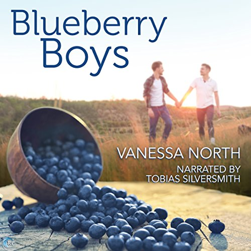 Blueberry Boys audiobook cover art