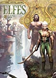 Elfes T27 - Les Maîtres Ogham