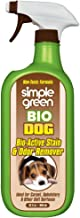 SIMPLE GREEN Bio Active Stain