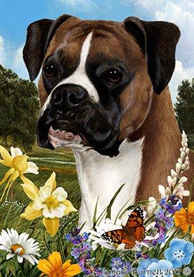 Best of Breed Boxer fauve sous couverture végétale - pavillons de jardin de fleurs d'été