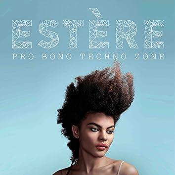 Pro Bono Techno Zone