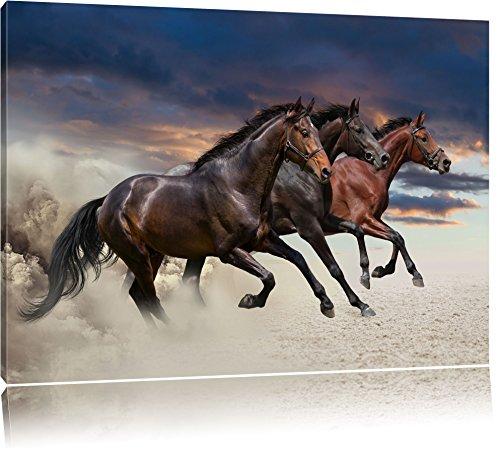 Trois chevaux sauvages occidentaux Format: toile 120x80auf, XXL énormes Photos complètement encadrés par la civière, l'impression de l'image Art mural avec cadre, moins cher que peintures à l'huile et de l'image, aucune affiche ou poster