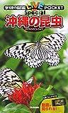 沖縄の昆虫 (学研の図鑑LIVEポケット スペシャル)