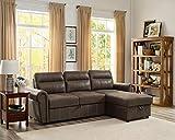Lilola Home LILOLA Ashton Microfiber Reversible Sleeper Sectional Sofa...