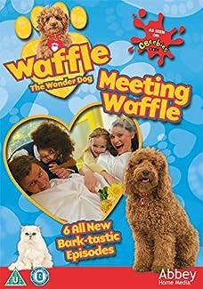Waffle The Wonder Dog - Meeting Waffle