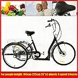 LianDu 26' 6 Velocidades 3 Ruedas Triciclo Adulto Negro Bicicleta de Crucero Triciclo de Bicicleta con Cesta